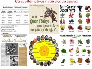 Guanábana Anticancerígeno Natural CMGB