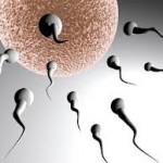 Infertilidad y acupuntura